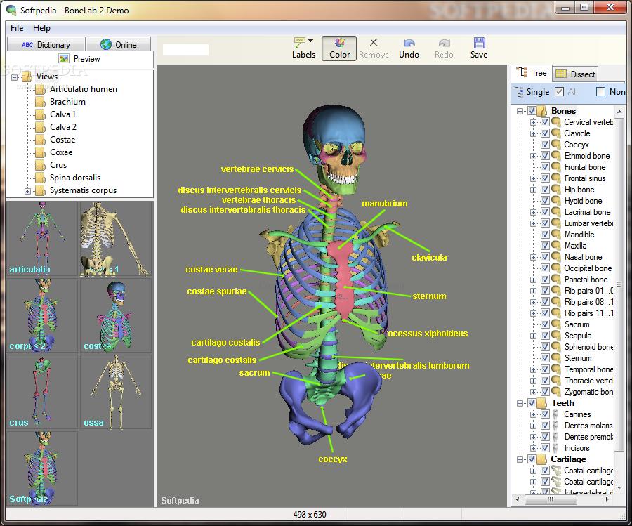 تشريح الجسم البشرى ثلاثي الابعاد برنامج التجربة