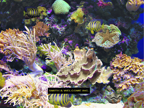 The Worlds Coral Reefs