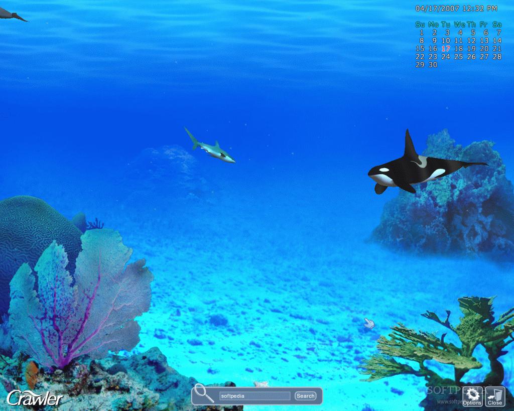 Paisajes playas en movimiento epatipepy for Marina aquarium