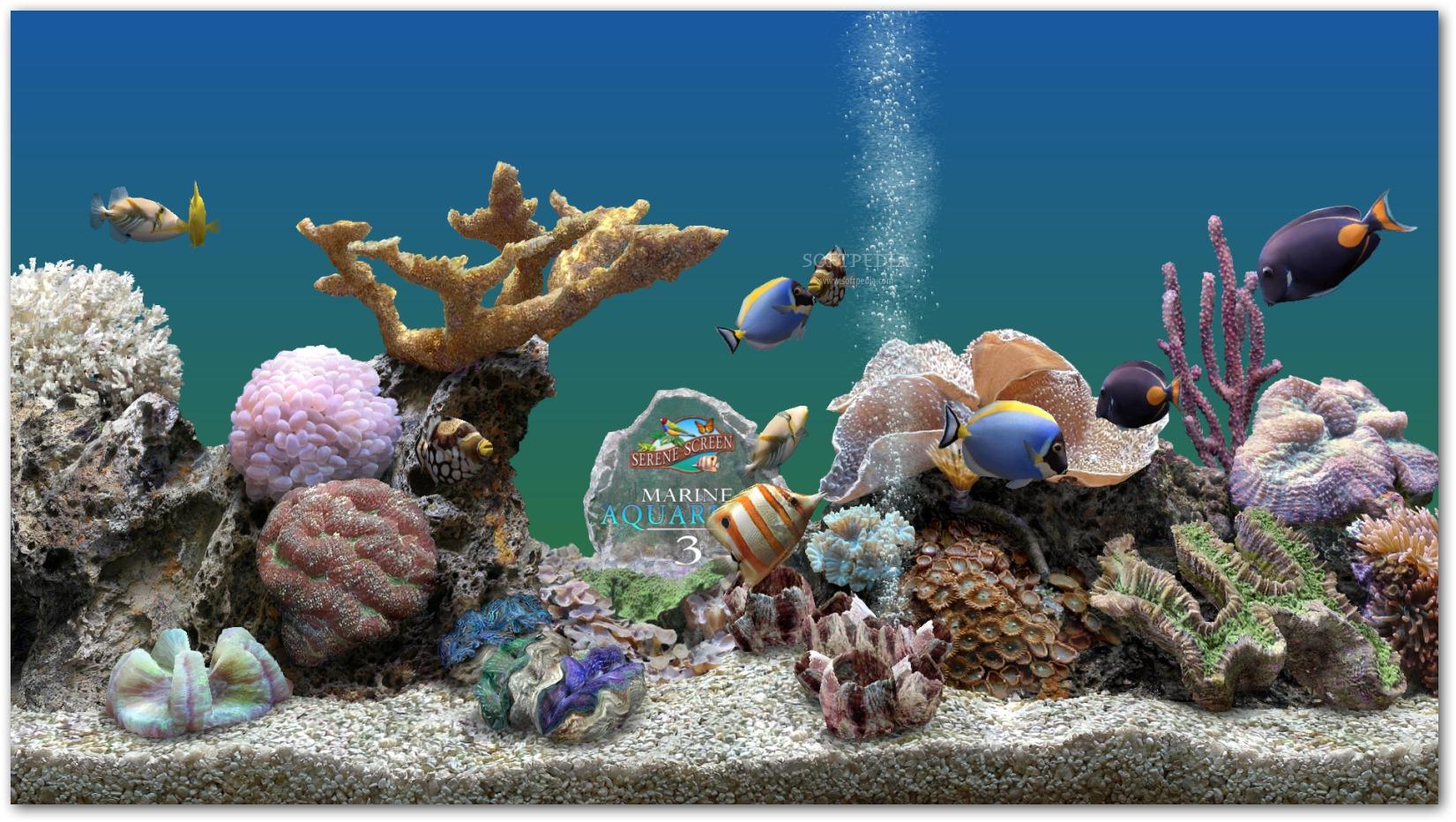 Marine Aquarium Time 2.0 License Code